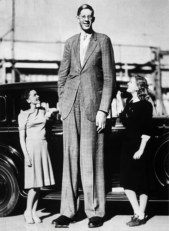 Robert Wadlow, The Giant of Illinois. Having reached a height of 8 ft 11 in, Wadlow is the tallest confirmed person to have ever lived